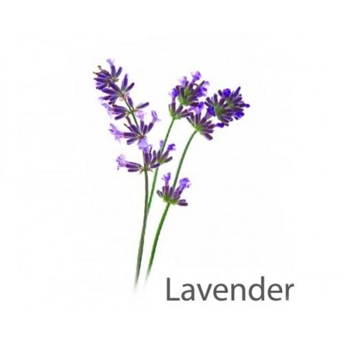 Aroma Lavender 1 litre