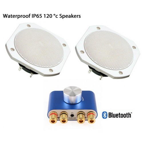 120°C High temperature waterproof IP65 speakers with Bluetooth