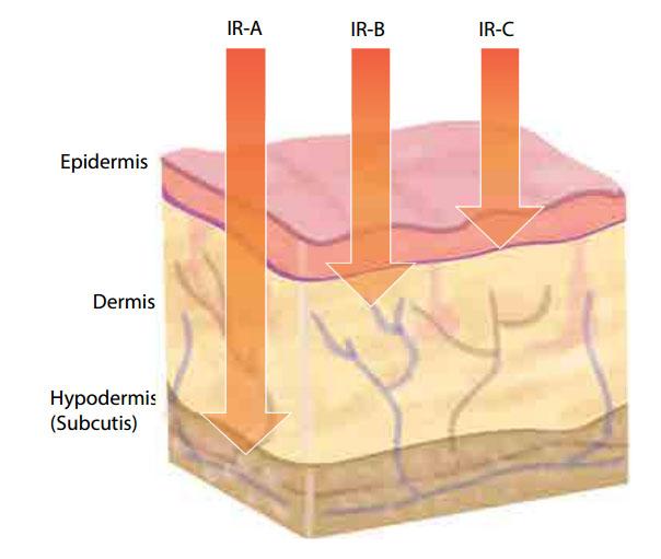 infrared skin penetration of IRA IRB IRC Oceanic infrared sauna